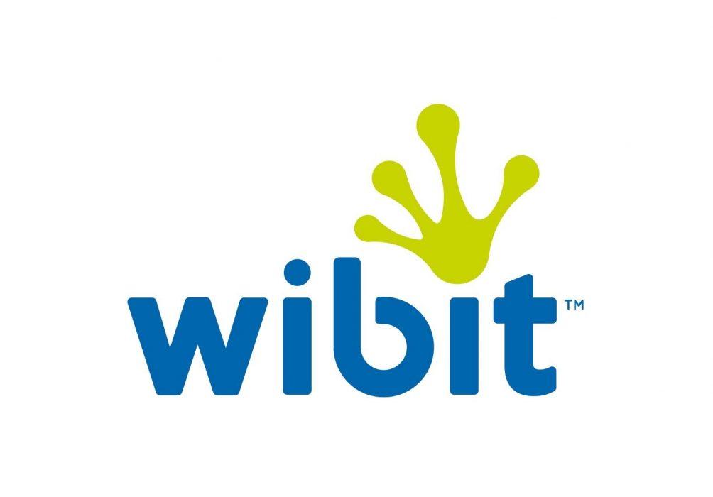 <center>The birth of Wibit</center>